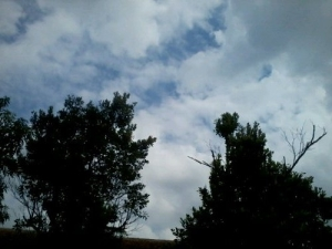 blue sky covered with cloud